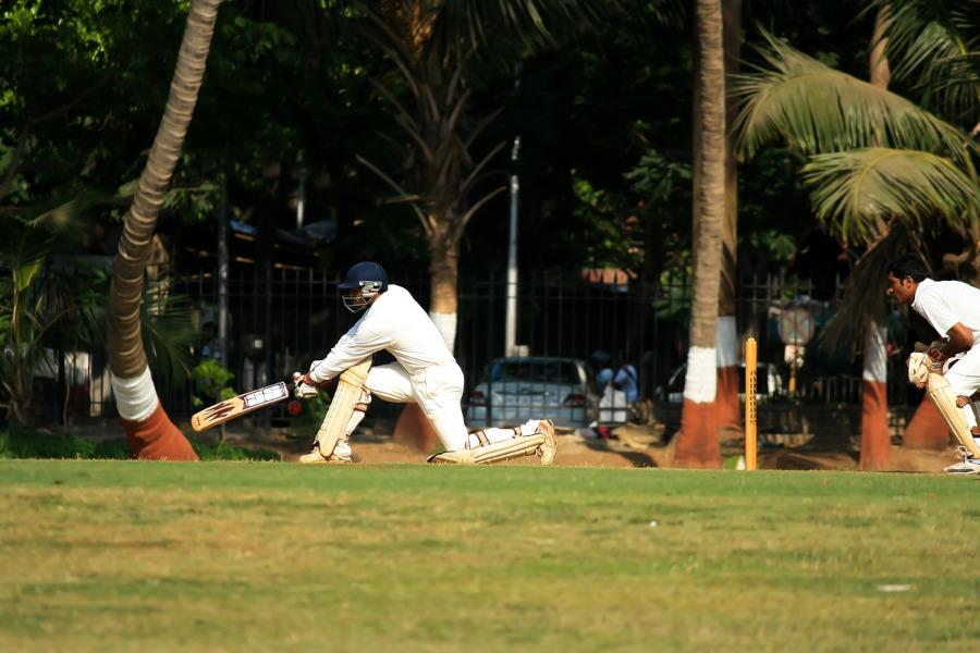 Dismissed in Cricket