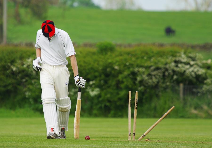 no ball cricket