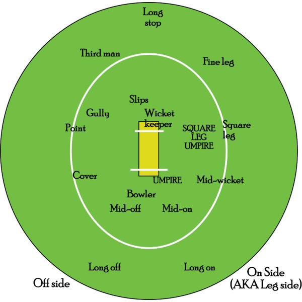 Cricket-Fielding-Positions-Explained