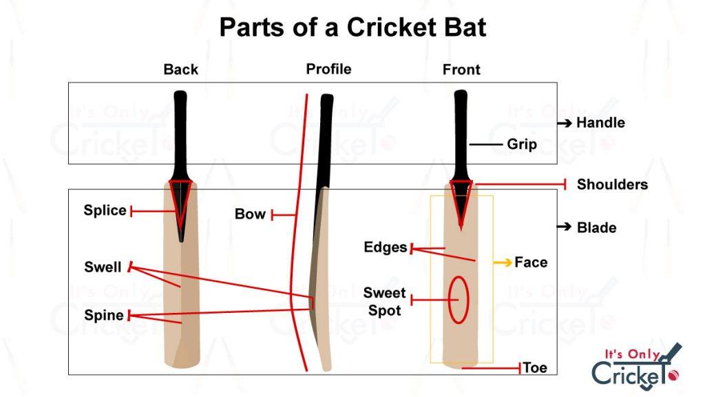 All Parts of a Cricket Bat