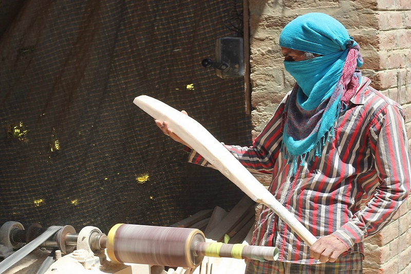 Kashmir Willow vs English Willow: Types of Cricket Bats