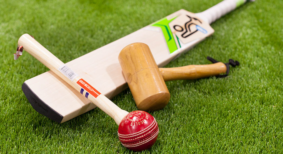 cricket bat knocking in