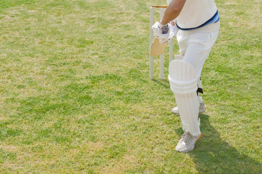 all cricket shots