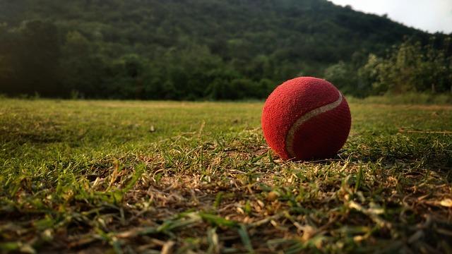 Cricket tennis ball on the field