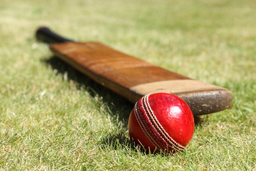 cricket bat after knocking