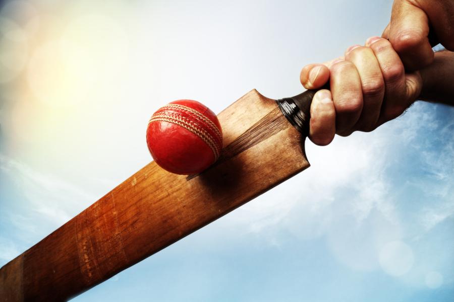cricket bat protect