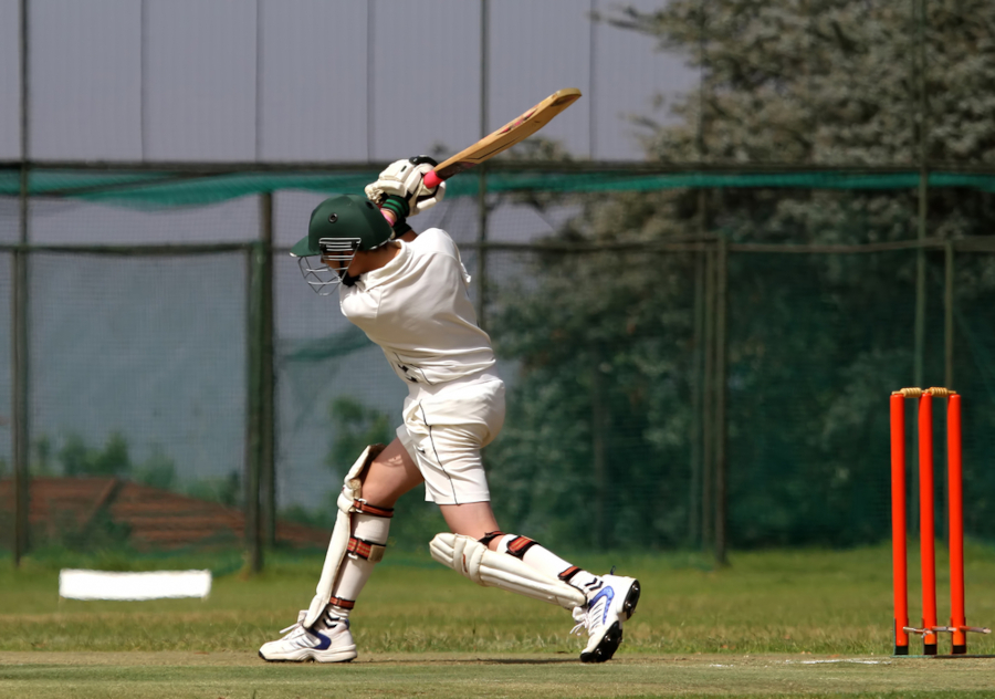 types of cricket shots