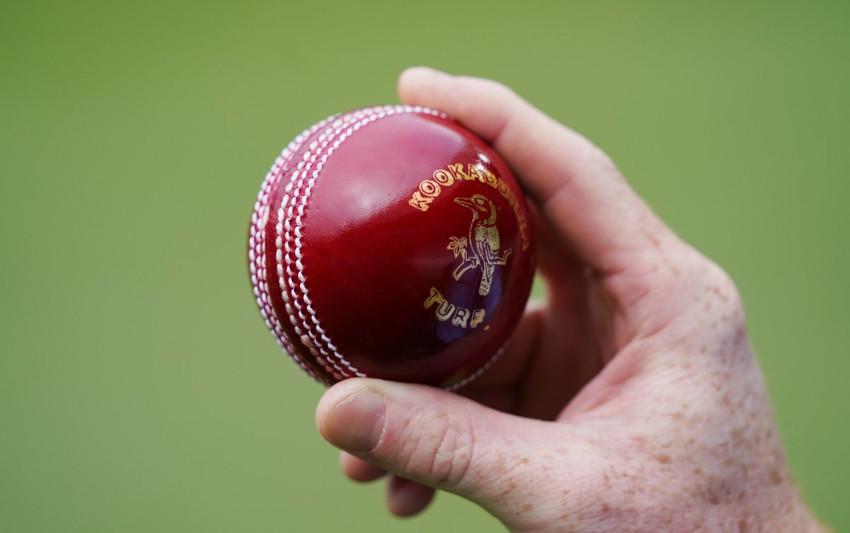 Cricket-Ball-shine