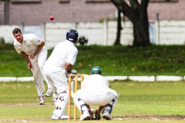 How Choose cricket Shot