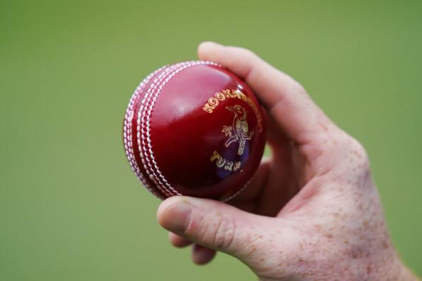 Shine Cricket Ball