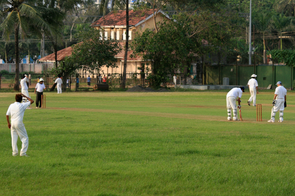 cricket pitch green