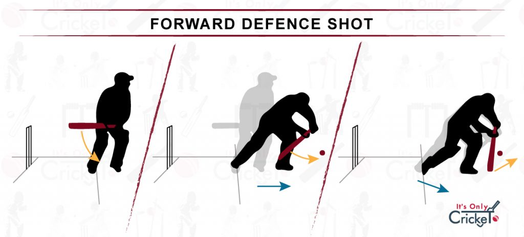 How to Play Forward Defence Cricket Shot