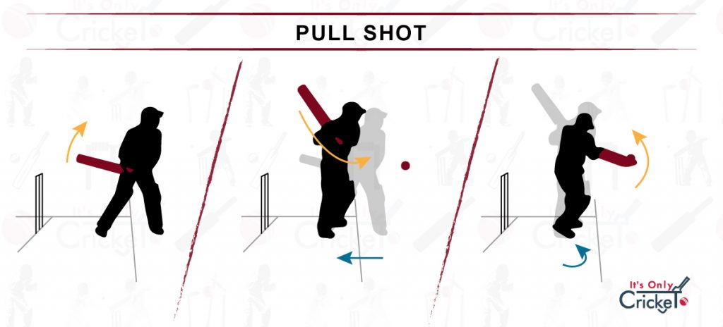 How to Play Pull Shot in Cricket