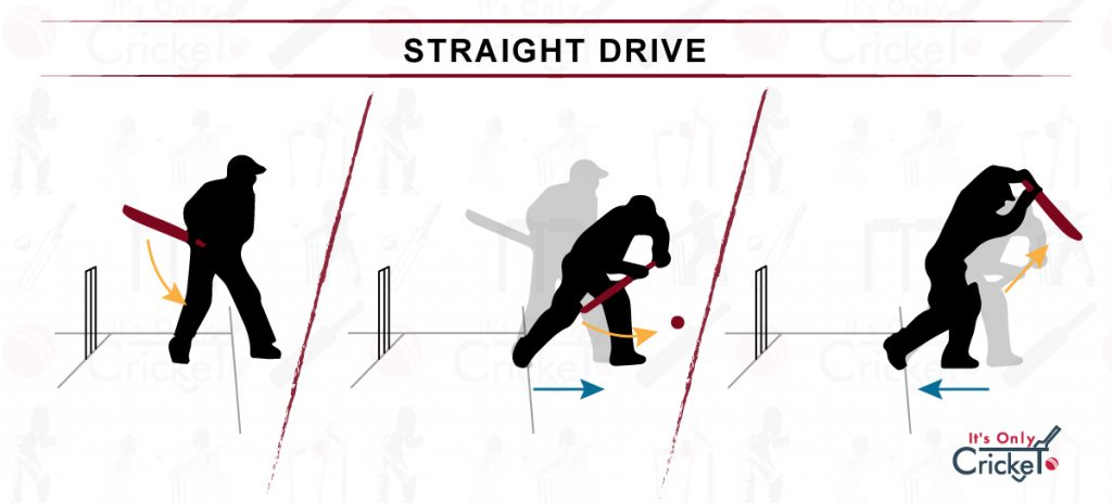 How to Play Straight Drive Cricket Shot