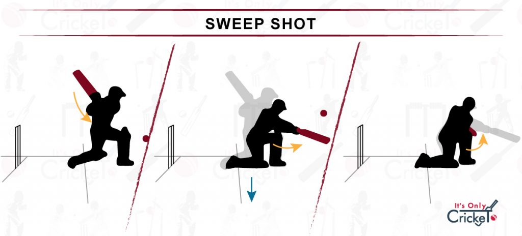 How to Play Sweep Shot in Cricket