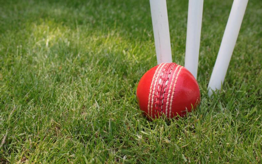 cricket-ball-fear