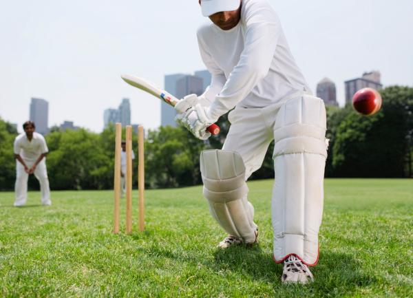 cricket-guards