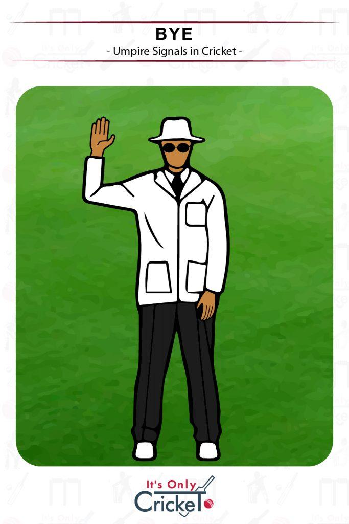 Cricket Umpire Signal Bye